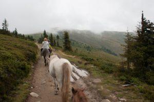 Muntele Danu