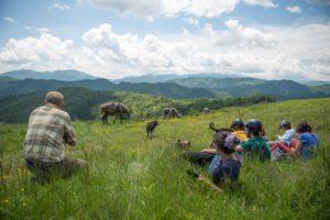 Nomazi în munții Lotrului @ Nedeea Valceana   Călinești   Județul Vâlcea   România