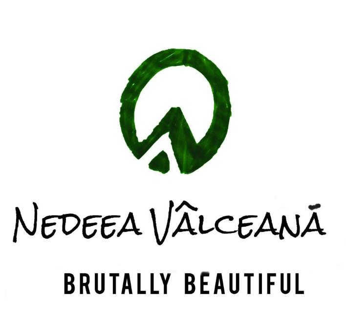 Nedeea Vâlceană